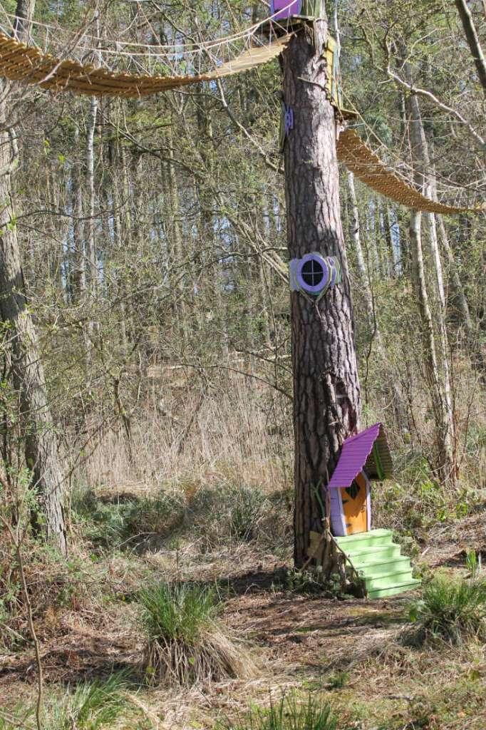 bewilderwood treacherous trail