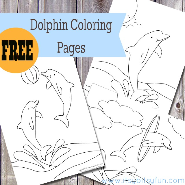 dolphin colouring pages