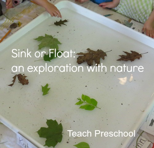 Sink-or-Float-with-Nature-by-Teach-Preschool