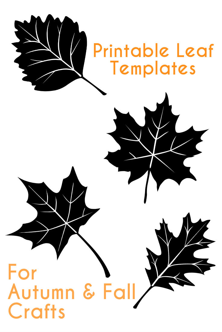 This is a graphic of Zany Fall Leaves Template Printable