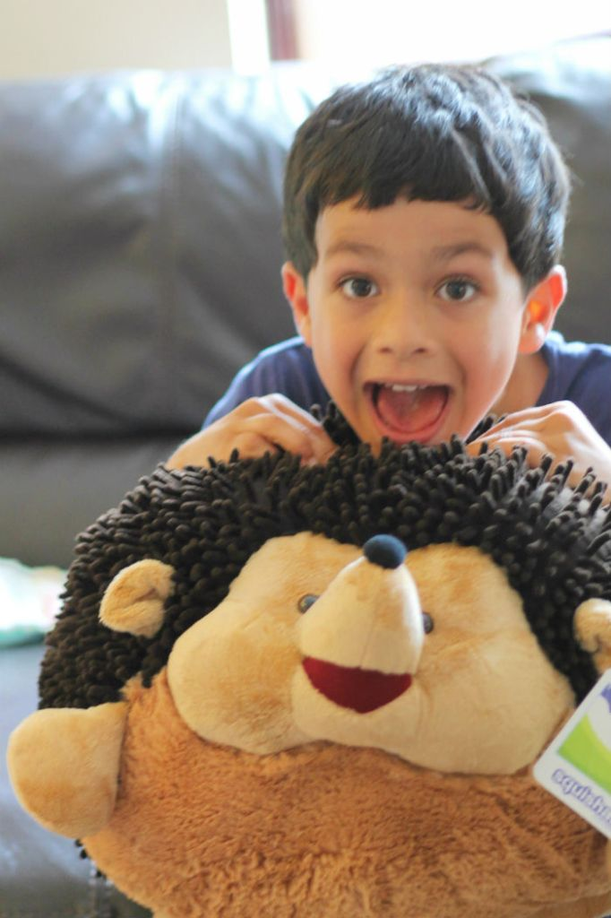 excited about the squishable hedgehog