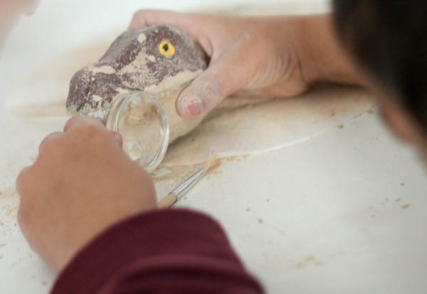 dinosaur fossil with magnifying glass