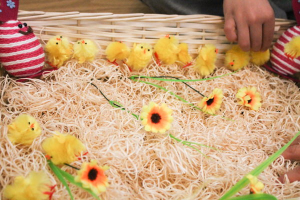 counting with spring chicks sensory bin