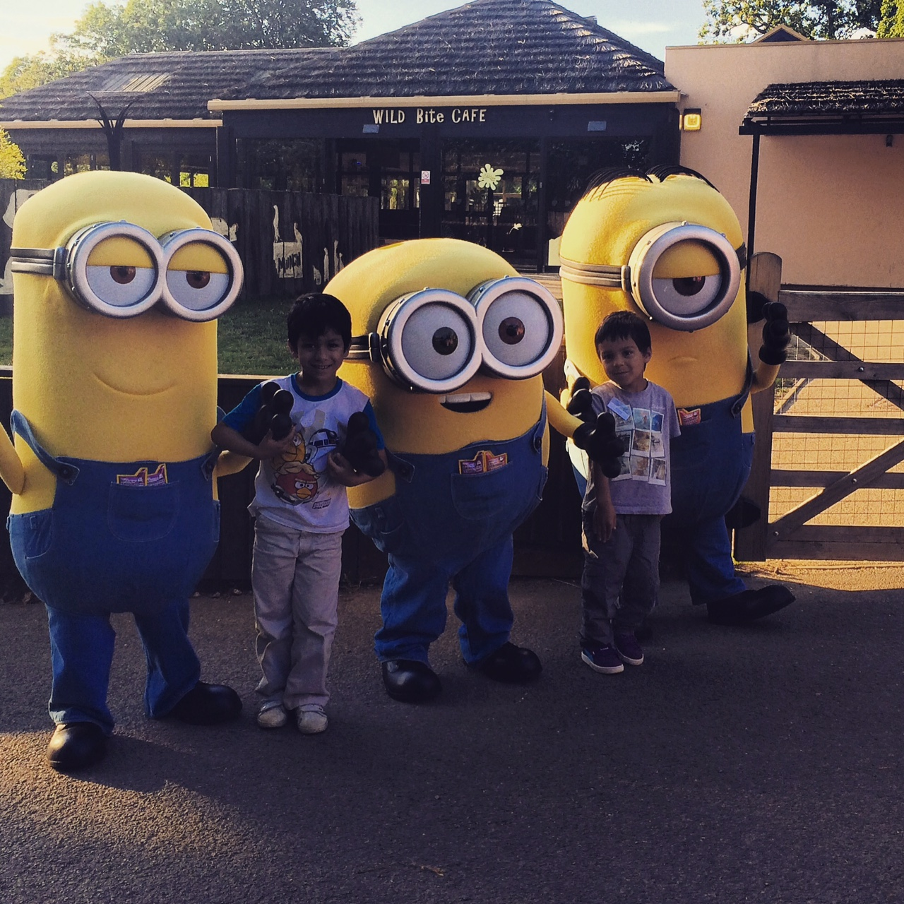 minions at zsl whipsnade zoo