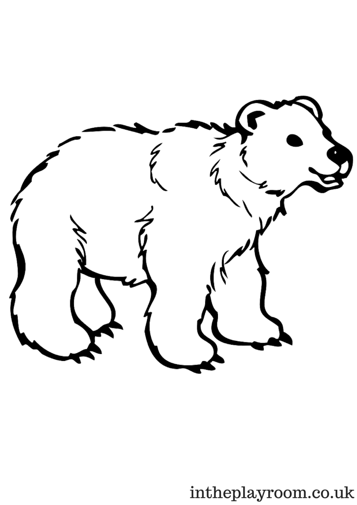 Polar bear colouring page for kids