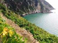 cinque terre e vino di flaminia cesa intothewine 4