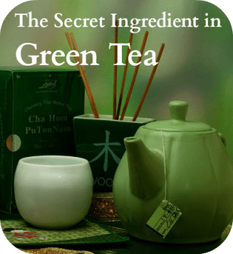 The Secret Ingredient in Green Tea