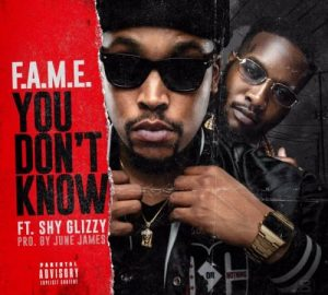 fame ft shy glizzy you dont know