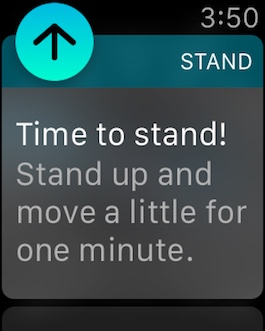 Time To Stand watch