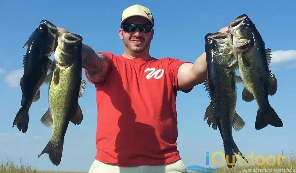 Cape coral bass fishing cape coral bass fishing guides for Cape coral fishing charters