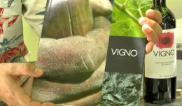 VIGNO - Chile's First Appellation Is Born