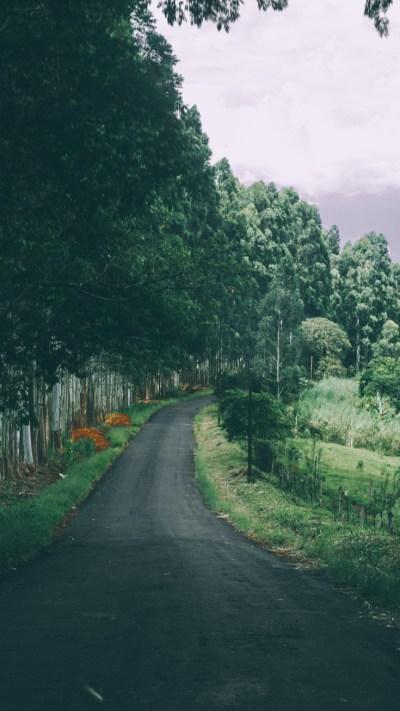 Road-Beautiful-Nature-iPhone-Wallpaper - iPhone Wallpapers