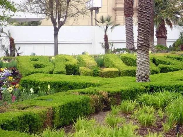 Ballys Topiary