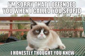 grumpycatcallsyoustupid