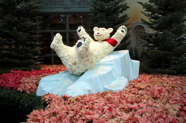 Bellagio Las Vegas conservatory Christmas polar bear on a block of ice