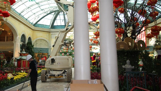 bellagio conservatory las vegas changeover to chinese new year