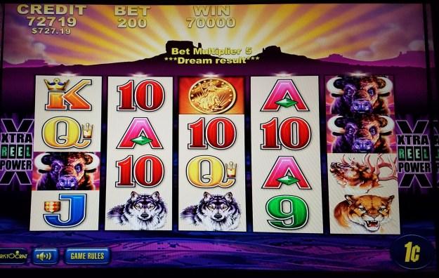 buffalo slot machine 700 win