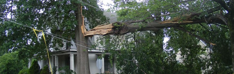Trees-and-power-lines-down-20000-without-power-in-southern-indiana-after-storm