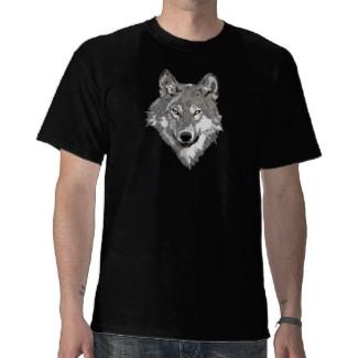 Gray Wolf Illustration Design