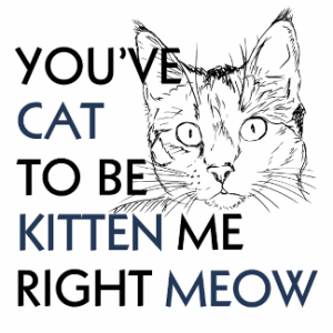 You've Cat To Be Kitten Me Right Meow Design