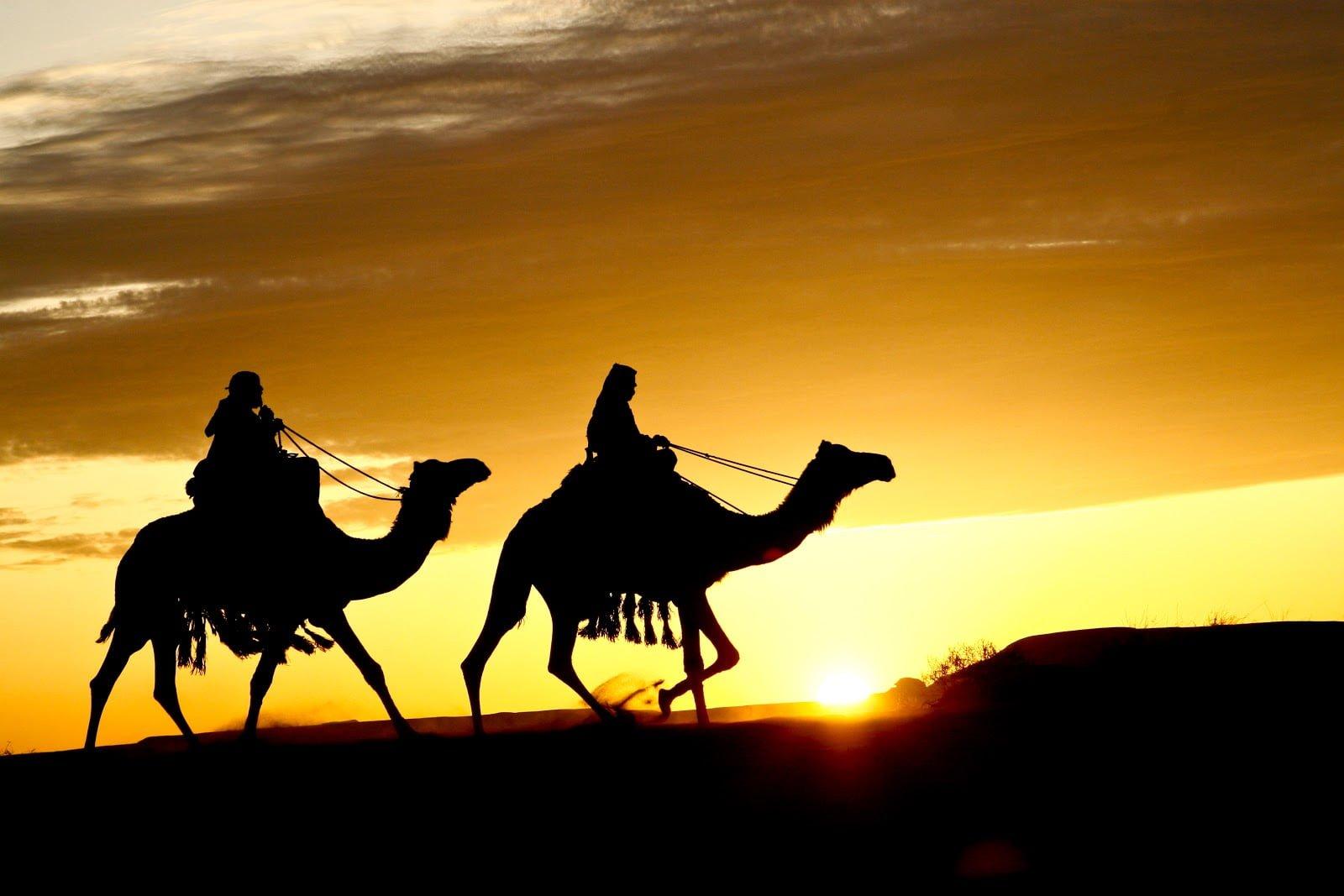 IBNU HAJAR AL-HAITAMI DAN AR-ROMLI, PELANJUT ASY-SYAIKHAN