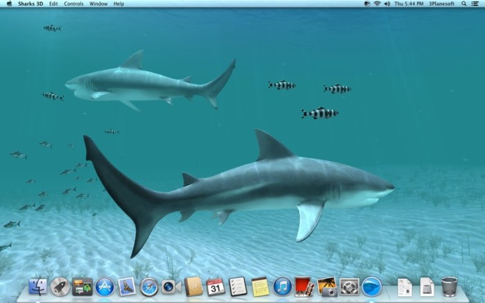 2_Sharks_3D.jpg