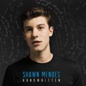 Shawn Mendes - Stitches  artwork