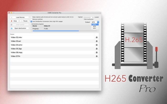 1_H265_Converter_Pro_HEVC_Tool.jpg