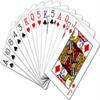 Steve Yang - BridgeKeeper- bridge card game アートワーク