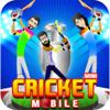 Hafiz Aman Ullah - 2017 Mini Cricket Mobile Game アートワーク