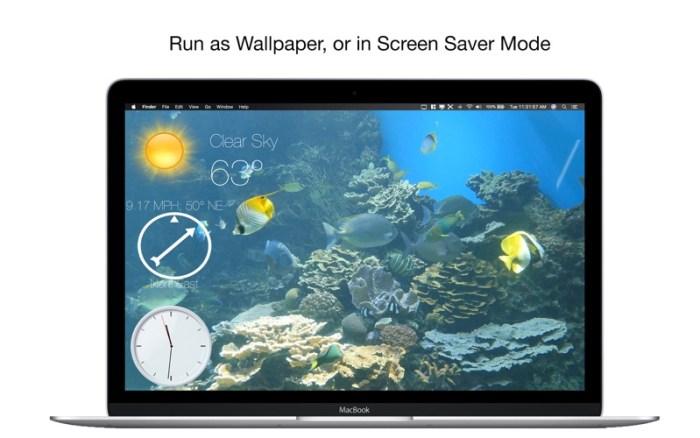 3_Aquarium_4K_Live_Wallpaper.jpg