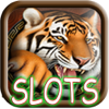 Nguyen Hieu - A Monter Buster: Casino Slots Free Game HD アートワーク