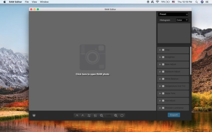 1_RAW-Editor.jpg
