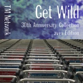 TM NETWORK - GET WILD 30th Anniversary Collection - avex Edition アートワーク