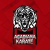 Foxspin LLC - Acadiana Karate アートワーク