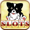 Nguyen Hiep - Pet House Casino : Slots Games With Lucky Jackpot Mania アートワーク