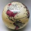 Millennium Maximus - Early World Maps Info アートワーク