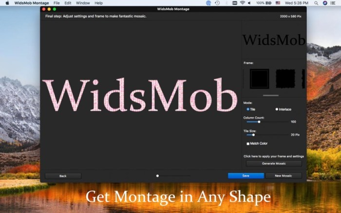 4_WidsMob_Montage-Photo_Mosaic.jpg
