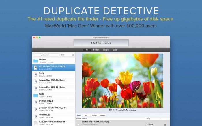1_Duplicate_Detective_Cleaner.jpg