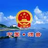 fang ying - 烟台政府网 アートワーク