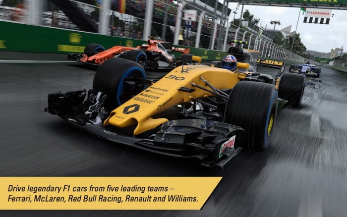 2_F1™_2017.jpg