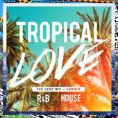 Various Artists - TROPICAL LOVE - ビーチで聴きたいトロピカルR&B x ハウス コレクション アートワーク