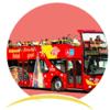 Manoj Tulsani - Hop-On Hop-Off Bus Tours アートワーク
