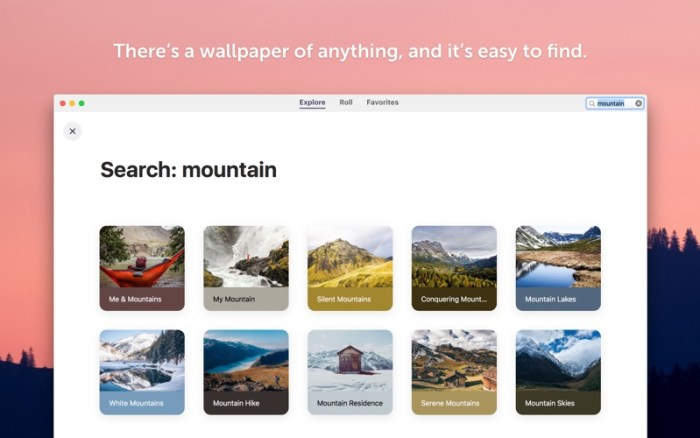 2_Wallpaper_Wizard_2.jpg