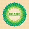 wei qian - 黄冈养殖网 アートワーク