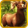 Amjad Ali - 2016 Deer Dream African Park Pro ~ Safari Hunting Shooting Games アートワーク