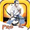 Yeisela Ordonez Vaquiro - Archer Karate Warrior PRO アートワーク