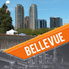 PALLI MADHURI - Bellevue Visitor Guide アートワーク