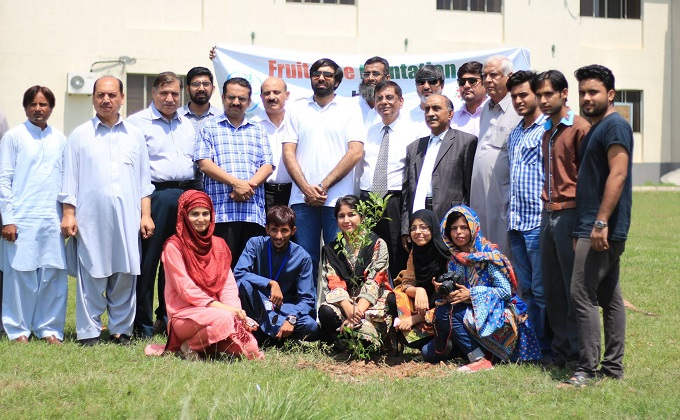 Going green: 1,000 fruit trees planted at QAU Islamabad