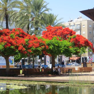 Rabin Square